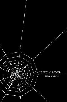 Caught+In+A+Web+eimage.jpg