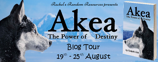Akea – The Power of Destiny Banner