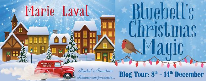 Bluebell's Christmas Magic Banner