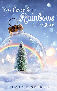 You Never See Rainbows at Christmas Cover