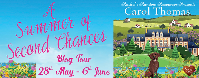 A Summer of Second Chances Banner