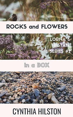 Rocks and Flowers in a Box Cover