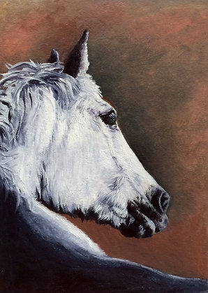 "Old Mare Matted 5"" by 7"" print"