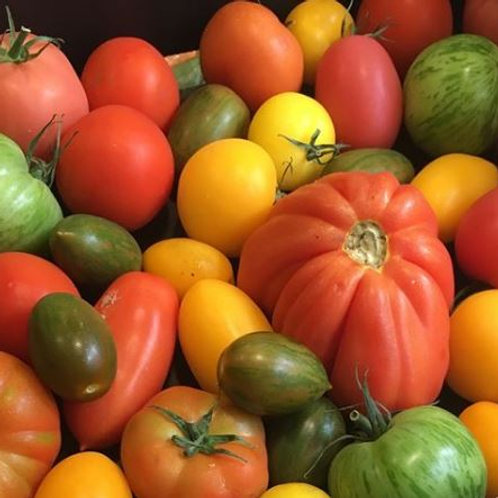 British Heritage Tomatoes (300g) COLLECTION ONLY
