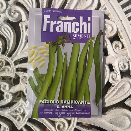 Climbing French Bean from Franchi Seeds (1 pack allowance)