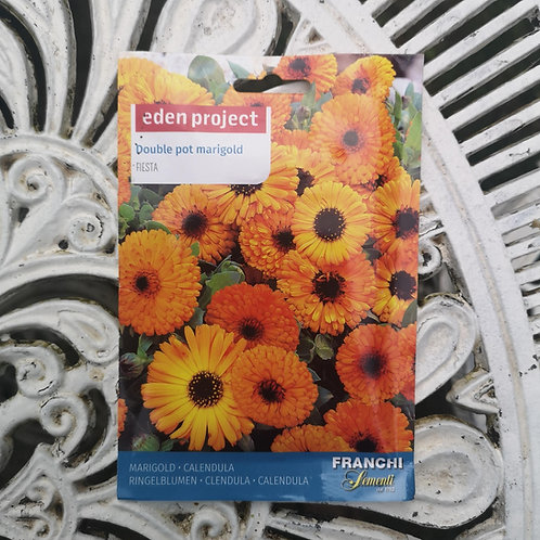 Marigold from Franchi Seeds (1 pack allowance)