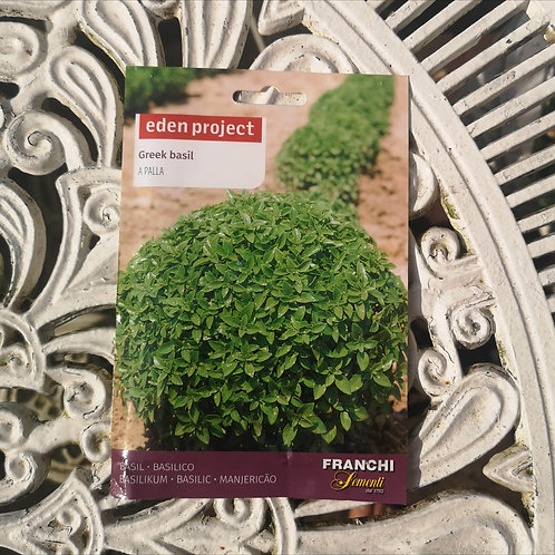 Greek Basil from Franchi Seeds (1 pack allowance)