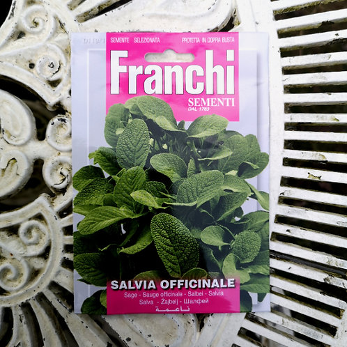 Sage from Franchi Seeds