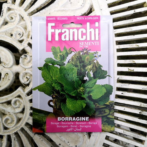 Borage from Franchi Seeds