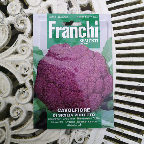 Purple Cauliflower from Franchi Seeds