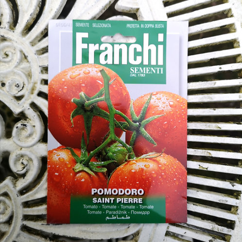 Tomato Saint Pierre from Franchi Seeds
