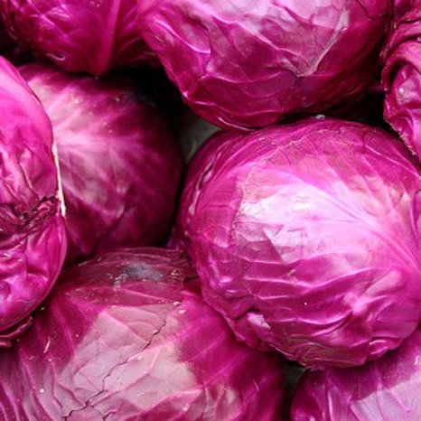 British Red cabbage approx £1.50