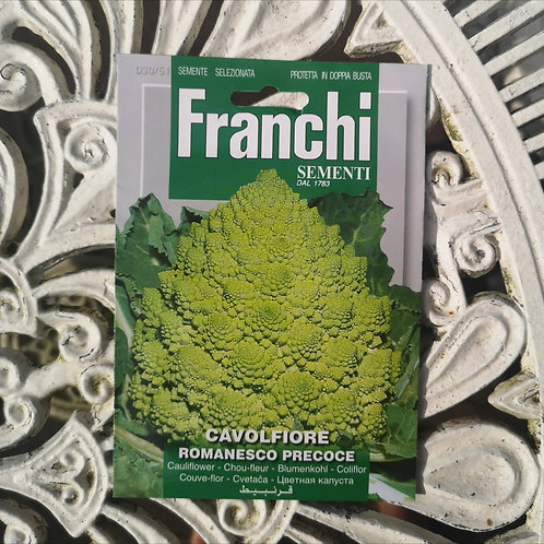 Romanesco from Franchi Seeds (1 pack allowance)