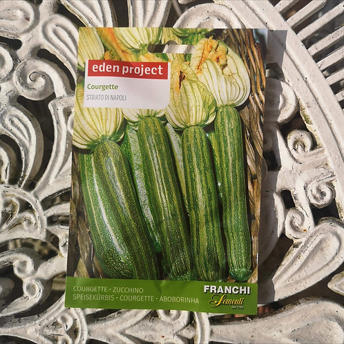 Courgette from Franchi Seeds (1 pack allowance)