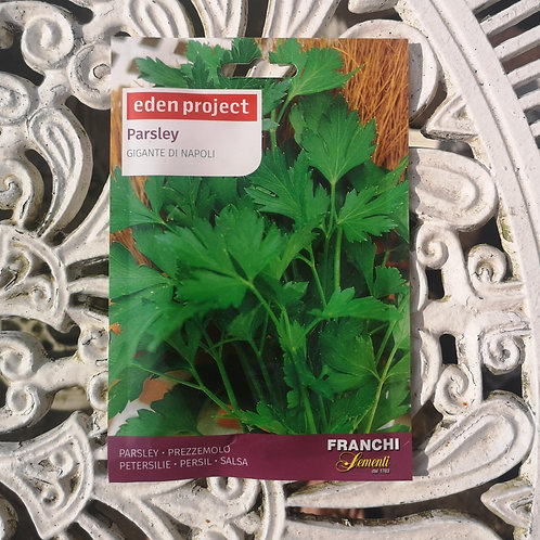 Parsley from Franchi Seeds (1 pack allowance)