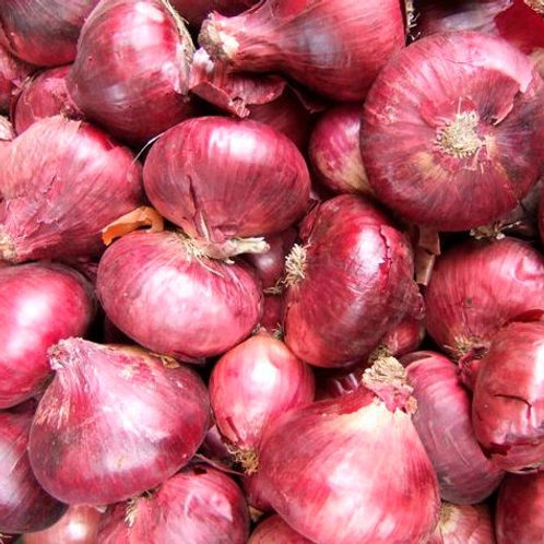 British Red Onion (4pcs) approx £1.15