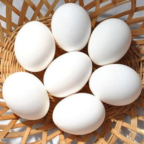 Free Range Duck Eggs from Lichfield (4 pcs)