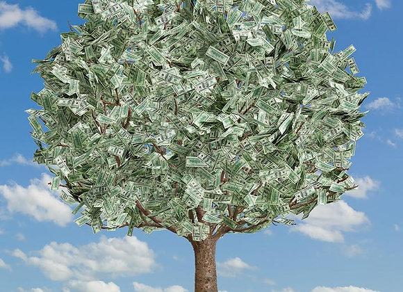 My Money Grows On Trees