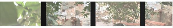 Screen Shot 2020-11-05 at 17.43.31.png