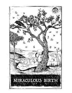 Miraculous Birth