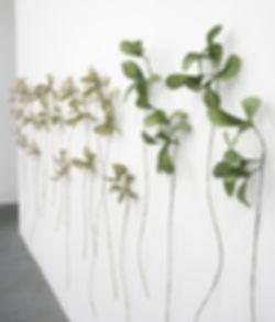Megan Singleton, Verdure, handmade paper