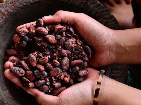 PRIMO BALI – SINGLE ORIGIN CHOCOLATE