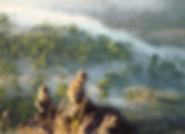 singe mont Batur Bali Amanaska