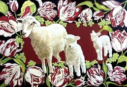 Sheep & Tulips