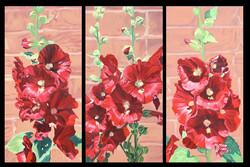 Red Hollyhocks I, II, & III