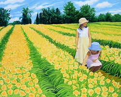 The Lily Field