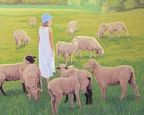 Chelsea and the Sheep