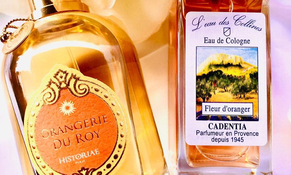 """EDP HISTORIAE - """"Orangerie du Roi """""""