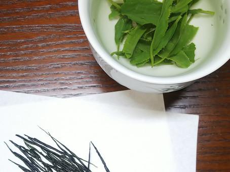 静岡市手揉保存会の品評会でW入賞!手揉み茶です👍