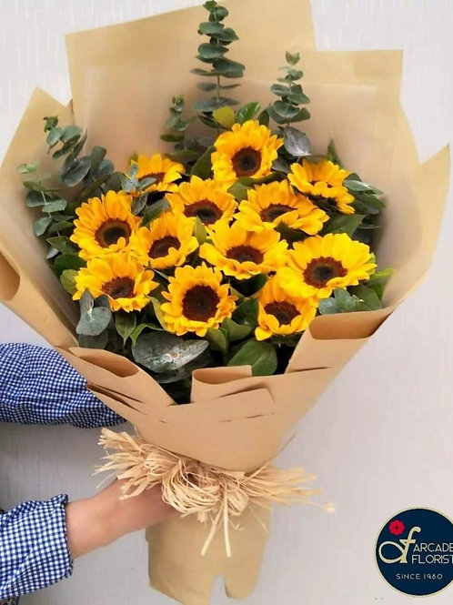 AF Collection Of Sunflowers