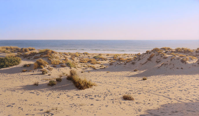 Dune by the sea