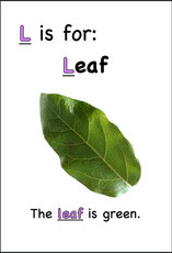 The leaf is green.