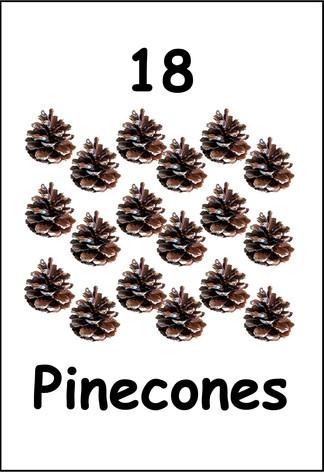 18 Pinecones