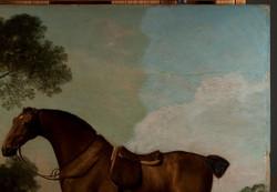 detail-horse