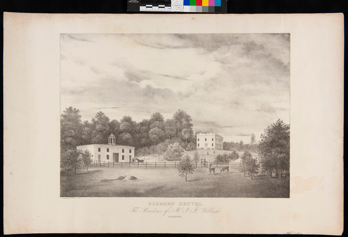 Lithograph before
