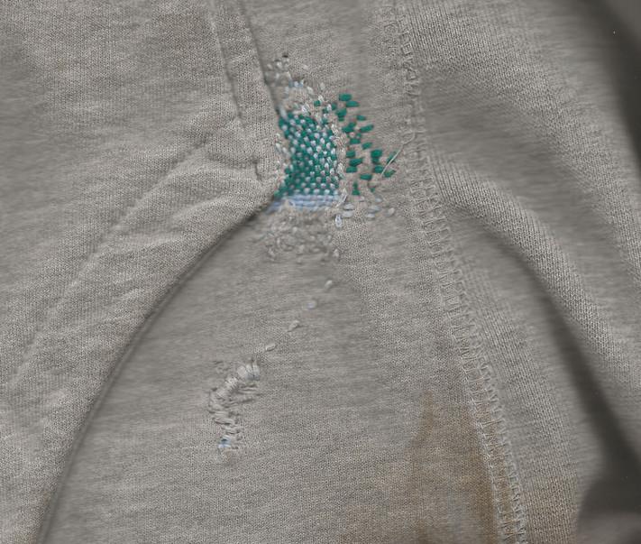 joe's sweatshirt 2