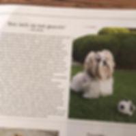 artikel woef pupkoper.jpg