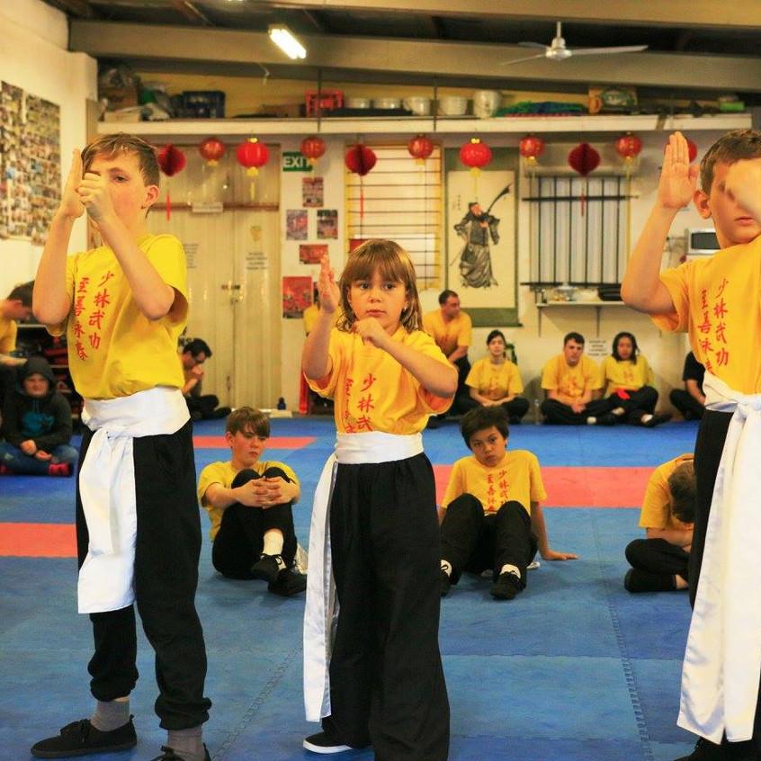 Jee Shin Wing Chun Grading Day #11