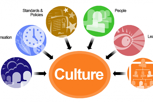 The culture of the organization