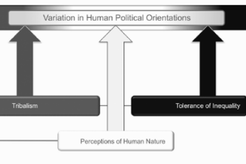Political orientations