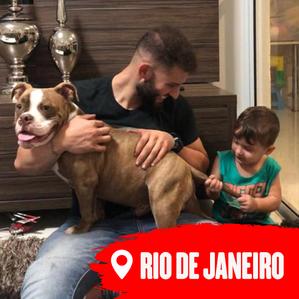 RIO.png