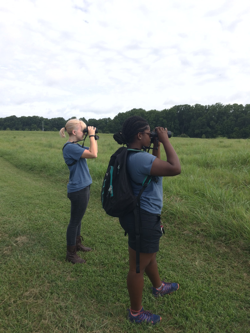 DNERR Interns Looking for Banded Bluebirds.JPG