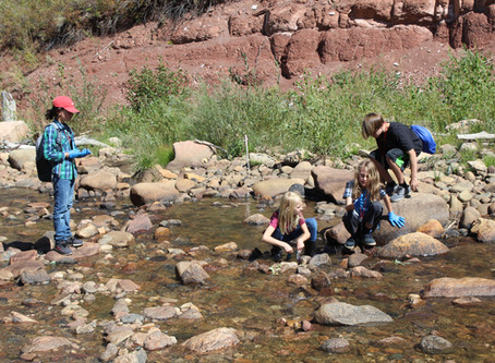 St. Vrain Community Montessori School Begins Using YLACES Materials for Citizen Science
