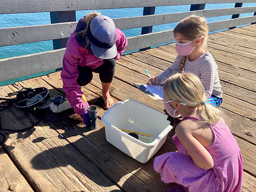 Connecting Classrooms to the Coastal Ocean