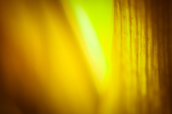 _MG_1861_Siren's Light.jpg