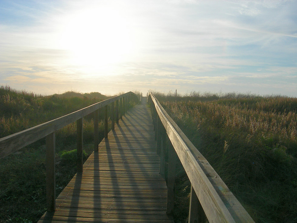 A wooden walkway over grassy sand dunes with the morning sun shining overhead.